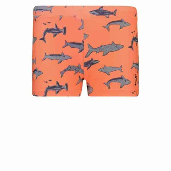 shiwi-swimshort-schark-juicy orange