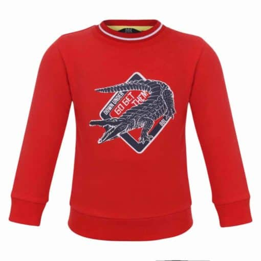 Beebielove sweater Hunt